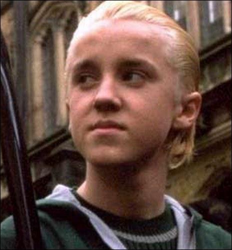Qui est le nouvel attrapeur de l'équipe de quidditch de Serpentard ?