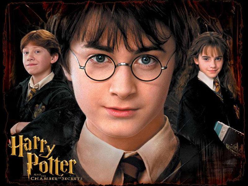 Que répond Harry à Dudley pour lui faire peur ?