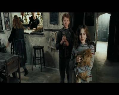 Où se rend Harry Potter après sa fugue ?