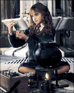 Dans 'Harry Potter et la Chambre des Secrets', que dit Hermione quand elle voit Harry et Hagrid sur le Chemin de Traverse ?