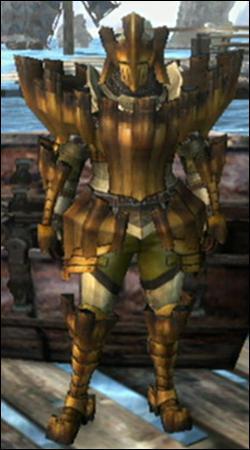 Quelle armure porte ce chasseur ?