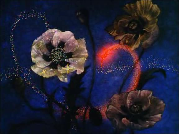La musique classique occupe une place extrêmement importante dans 'Fantasia'. De quel ballet est extraite la musique de la seconde partie du dessin animé ?