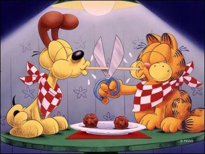 Quelle est la principale activité de Garfield ? (à part manger)