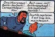 ''Cannibales ! Anthropophages ! '' Ces deux mots peuvent être synonymes.