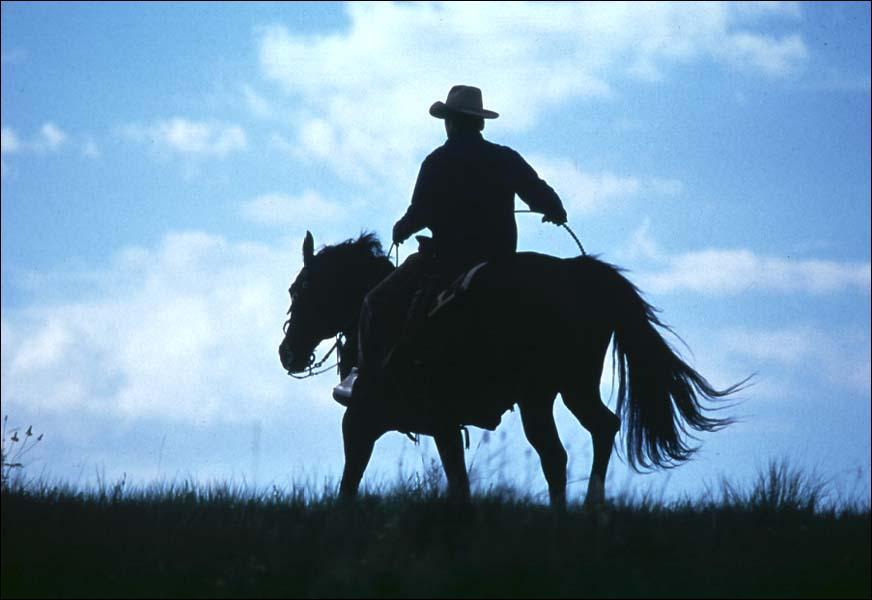 Dans le très beau film 'L'homme qui murmurait à l'oreille des chevaux', quel est le nom du personnage qu'interprète Robert Redford ?
