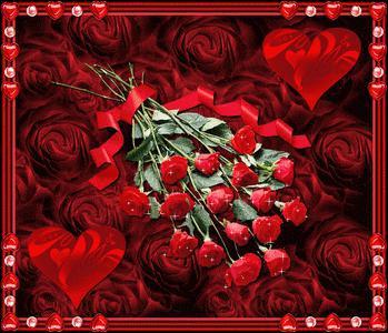 La rose rouge, symbole de l'amour, mais comment se nomme la rose sauvage ?
