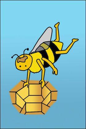 Quels métiers sont exercés par les abeilles femelles dans la ruche ? (plusieurs bonnes réponses)