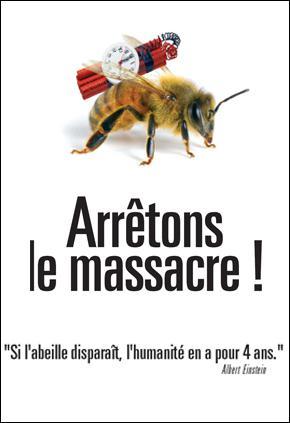 Pourquoi est-il vital pour l'homme et la planète de protéger l'abeille ? (plusieurs bonnes réponses)