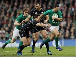 Pour l'Irlande, le signe de ralliement est cousu sur le maillot de son équipe...
