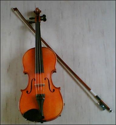 Cet instrument appartient à la famille...