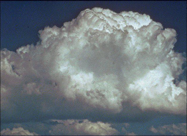 Je suis : le nuage qui a la forme la plus caractéristique et reconnaissable. Son aspect bourgeonnant le fait, en effet, ressembler à un chou-fleur.