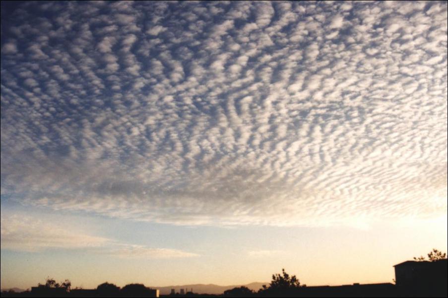 Je suis : (2000 à 6000 m )couches ou nappes de nuages blancs ou gris; annonce souvent un orage .