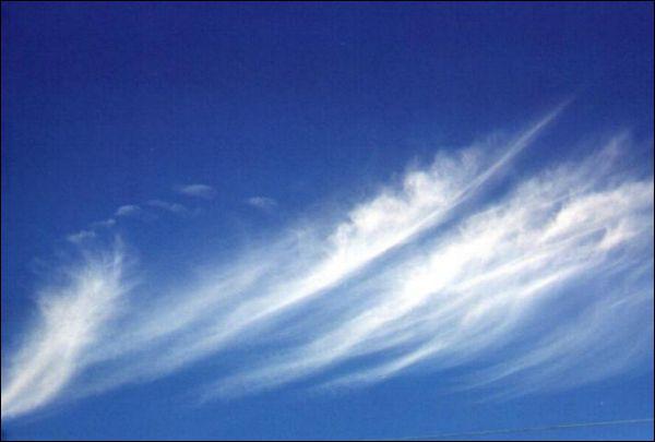 Je suis : 6000 et 15000 m;Ces nuages ont l'apparence de filaments blancs et ne génèrent pas de précipitations. On le compare souvent à des cheveux d'ange.