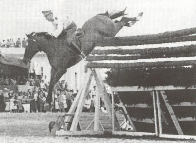 Quel cheval a sauté en CSO 2m47 ?