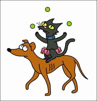 comment sappellent le chien et le chat des simpson