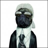 Ce chien se prend pour un grand couturier. Quel est son nom ?