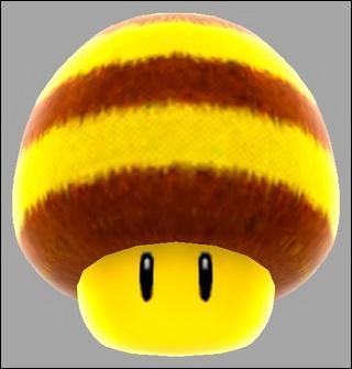 À quoi ce champignon poilu sert-il ?