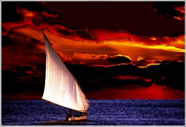 Les croisières sur ce type de bateaux ne se font que dans la partie méridionale du Nil : Assouan, Louqsor, Dendérah... Pour continuer notre voyage, je vous invite à embarquer sur une...