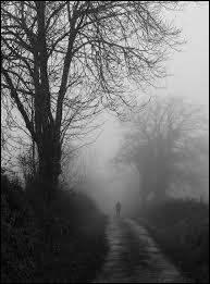 Demain dès l'aube, à l'heure où blanchit la campagne Je partirai. Vois-tu, je sais que tu m'attends J'irai par la forêt, j'irai par la montagne Je ne puis demeurer loin de toi plus longtemps