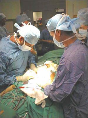 Qui a pratiqué la première transplantation cardiaque humaine ?