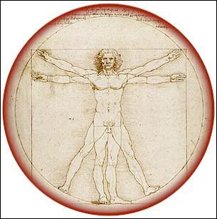 Chez l'être humain, quel est l'organe du toucher et de la préhension ?
