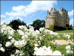 Ce château se nomme 'Château de Brissac'. Ce château est un château de :