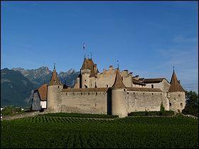 Ce château se nomme 'Château d'Aigle'. Ce château est un château de :