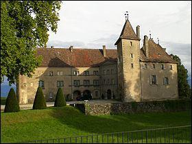 Ce château se nomme 'Château d'Allaman. Ce château est un château de :