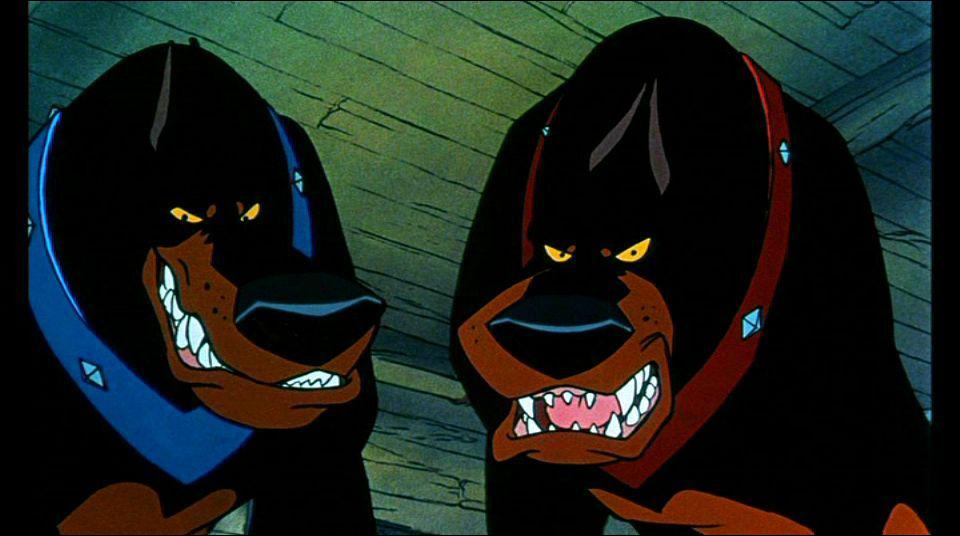 Deux vilains chiens qui en veulent à un chaton ...