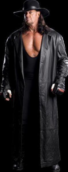 Catcheurs de la WWE