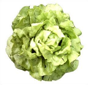 Quizz sur les légumes