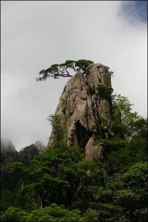 La Chine est un pays montagneux : 45% du territoire sont situés à une altitude de plus de ...