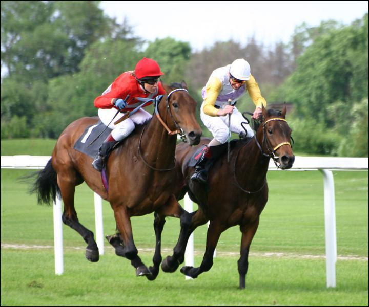 Où a lieu la plus célèbre course de chevaux de Grande Bretagne ?