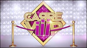 Carré VIP vient d'être lancé sur TF1, quelle personnalité n'en fait pas partie ?