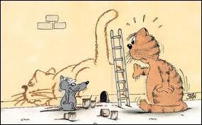 Pourquoi les souris n'aiment-elles pas les devinettes ?