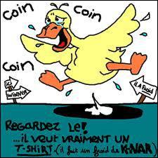 Le canard répond :