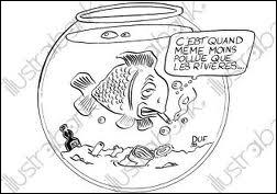 Quel est ce poisson qui a fini par attrapper une grosse bronchite ?