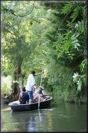 Comment s'appelle le bâton qui, piqué dans le fond de l'eau, sert à avancer ?