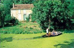 Le Marais poitevin : invitation au voyage !