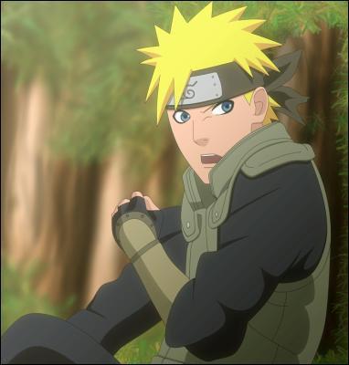 Que manque t-il à Naruto ?