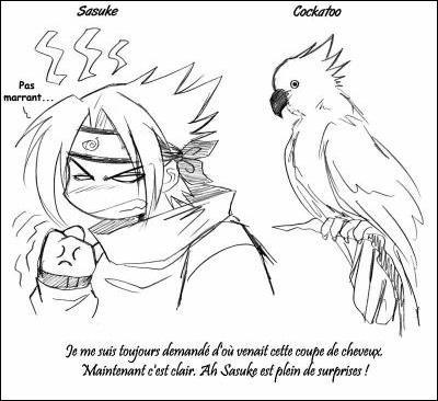 D'où vient la coiffure de Sasuke selon l'image ?