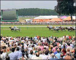 Comment sont installés les chevaux pour les courses d'obstacles ?