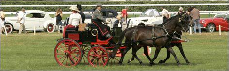Chantilly est la capitale du cheval.