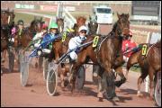 Au trot attelé le cheval doit courir le plus vite possible pour atteindre la ligne d'arrivée, mais quelle erreur ne doit-il pas commettre ?