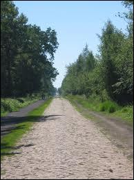 Cette année; 51 Kilomètres de pavés seront parcourus en... .
