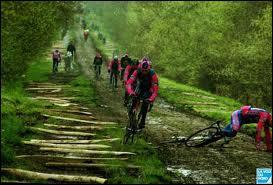 Le secteur le plus dangereux de la course est ' La Tranchée de Wallers-Aremberg ' appelé également... .
