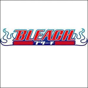 Qui a écrit Bleach ?