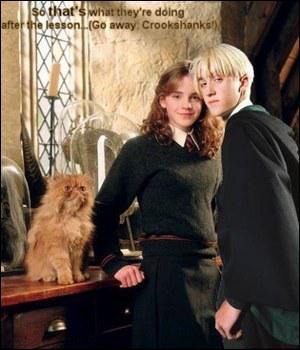 Malefoy insulte Hermione de ...