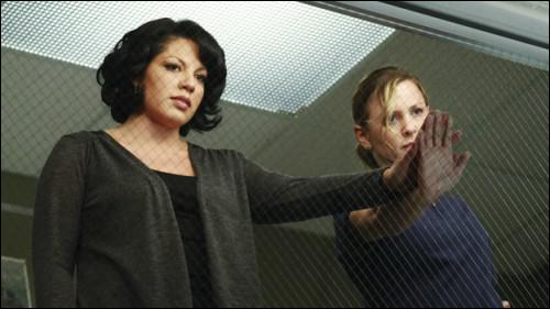 Christina fait part d'une idée de Teddy pour tenter de sauver Callie et prend comme exemple deux cas du SHG, lesquels ?
