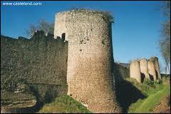 Située au coeur du bocage poitevin; cette cité possède un château du XI ième siècle qui joua un rôle important durant les guerres opposant les rois de France et d'Angleterre . C'est...